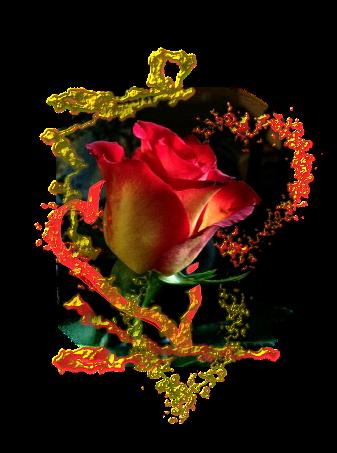avtor-svet_lana-i-ailar-the-potential-of-roses