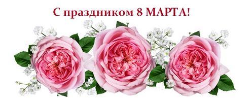 С праздником 8 марта! — специальные подарки для Вас